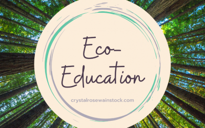 Why Eco-Education?